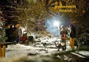 Microsoft Word - Einladung Waldweihnacht Halsbach 2